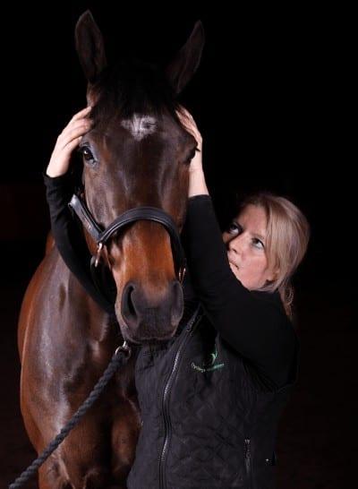 kraniosakralterapi til heste