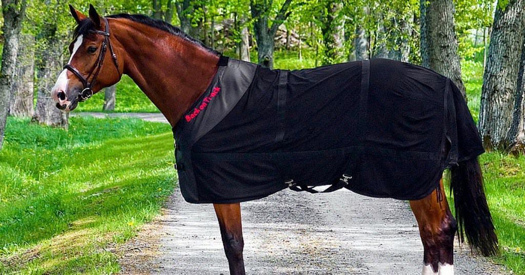 Det her kan forlænge og forbedre effekten af mine behandlinger af din hest