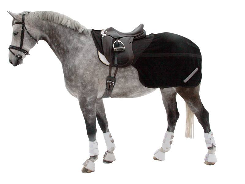 laendedaekken med hest