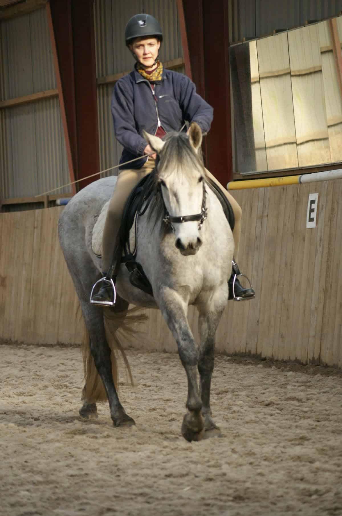 Lone Møller og hesten Indrino