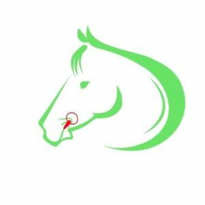 bidtilpasning hest forkert