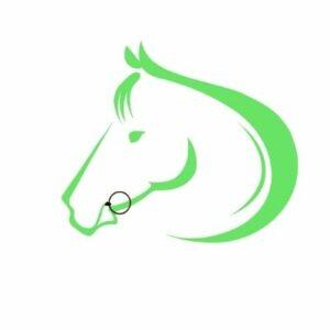bidtilpasning hest korrekt